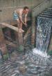 Julian Beever - Wodospad